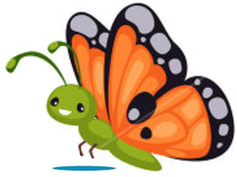 vlinder-klas2